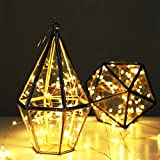 Christmas Celebration party garden party fence Kids' gift etc* These battery operated LED wire string colors lights are perfect for use in floral arrangements indoor decorating any lighting project or beautiful addition to something you want to empha...