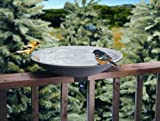 API Non Heated Birdbath w/ EZ Tilt Deck Mount