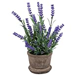 WINOMO Artificial Flowers Plastic Lavender Arrangements in Pots for Home Office Decor (Purple)