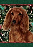 Cheap Best of Breed Dachshund (Long Haired, Red): Indoor/Outdoor House Flag (Holiday Treats Serie.