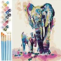 EXTSUD Paint by Numbers for Adults, 16 x 20 Inch Canvas DIY Acrylic Painting for Adults and Kids with Brushes and...
