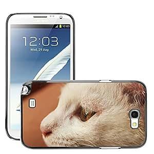 Etui Housse Coque de Protection Cover Rigide pour // M00112748 Gato Animal Gato Blanco // Samsung Galaxy Note 2 II N7100