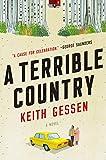 A Terrible Country: A Novel