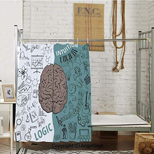 (Brain Image with Left and Right Side Music Logic Art Side Science Print Privacy Bed Curtain,(63