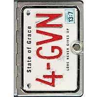 NLT Metal Bible 4GVN Silver