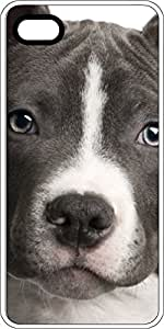 Black & White Pit Bull Face White Plastic Case for Apple iPhone 4 or iPhone 4s
