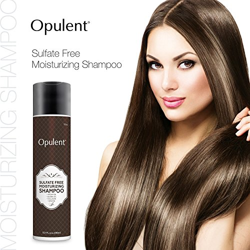 Moroccan Argan Oil Shampoo For Dry Color Treated Damaged