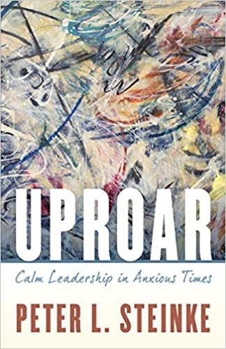 Why Theres Uproar Over Trying To >> Uproar Calm Leadership In Anxious Times Peter L Steinke
