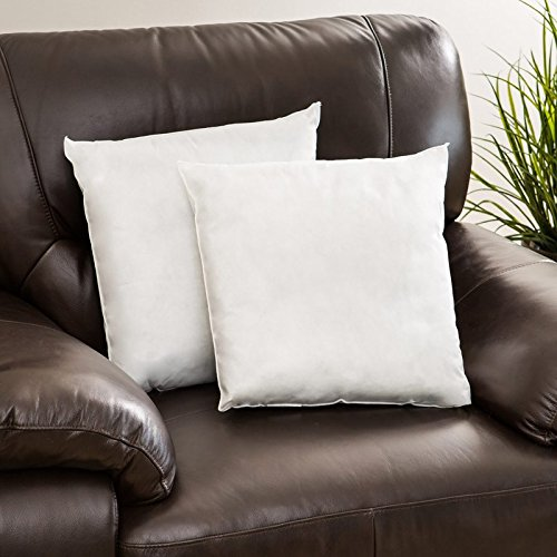 Beds Couch Made in USA Extra Firm Perfect for Sofas 18x18 Throw Pillow Insert Filled with White Shredded Foam