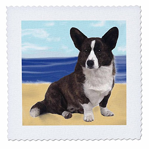 3dRose qs_4161_1 Cardigan Welsh Corgi Quilt Square, 10 by 10-Inch Quilt Cardigan