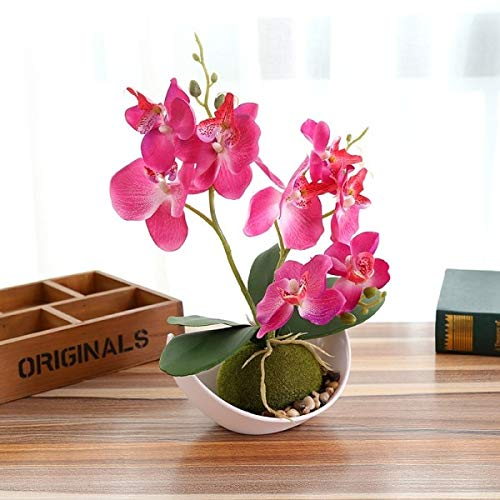 ASMGroup Mini Artificial Plants Artificial Butterfly Orchid Potted Plants Silk Flower with Plastic pots Moss Home Balcony Decoration vase Set Wedding Decorative, Rose -