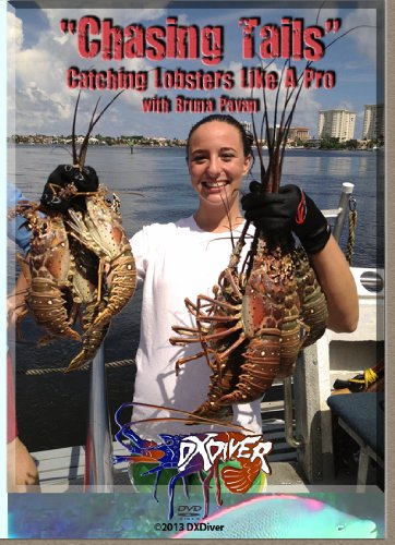 chasing-tails-catching-lobsters-like-a-pro-by-bruna-pavan-lobster-use-of-snare-lobster-net-lobster-h