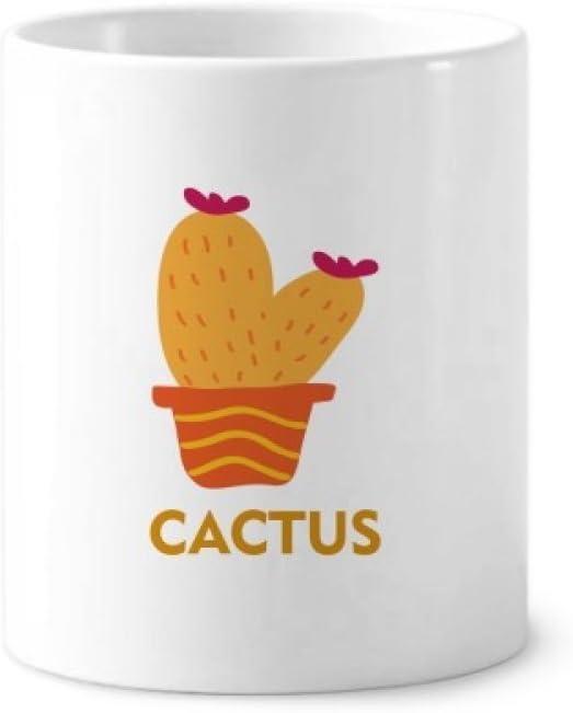 Ceramica de cactushttps://amzn.to/2R05Ljx