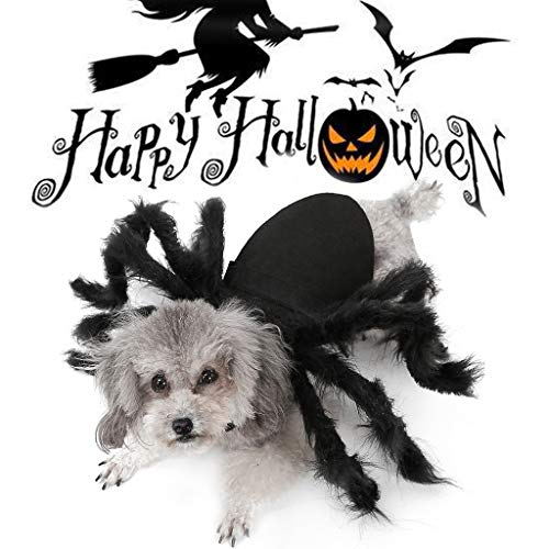 Spider Costume For Dogs - JIJIKOKO Awesome Halloween Pet Spider Clothes