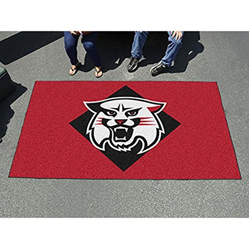 Fanmats 1309 New Hampshire Football Rug 20.5