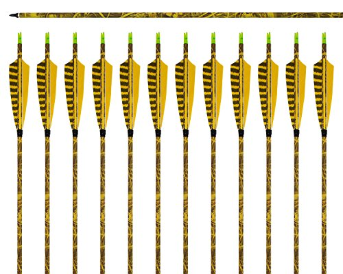 ARCHERY SHARLY [12 Pack] 31Inch Carbon Arrow Practice Hunting Arrows with 5