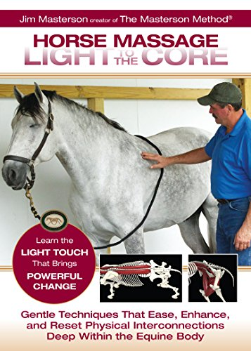 (Horse Massage Light to the Core)