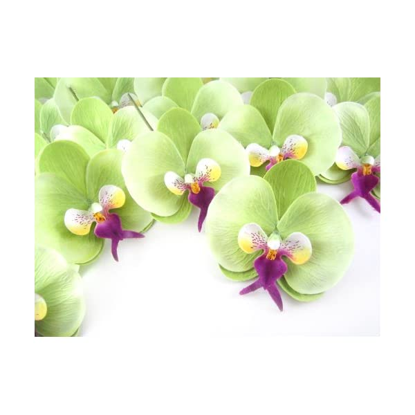 (100) Green Phalaenopsis Orchid Silk Flower Heads – 3.75″ – Artificial Flowers Heads Fabric Floral Supplies Wholesale Lot for Wedding Flowers Accessories Make Bridal Hair Clips Headbands Dress