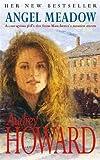 Angel Meadow (Coronet Books)