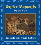 Tender Moments in the Wild, , 0976954206