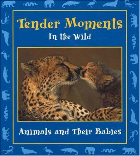 tender-moments-in-the-wild-animals-and-their-babies-moments-in-the-wild-series