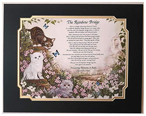 Rainbow Bridge Pet Memorial Poem for Loss of Your Beloved Cat w/Forest Green & Frosted Gold Dual Mat by Names to Remember