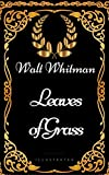 Image of Leaves of Grass : By Walt Whitman - Illustrated