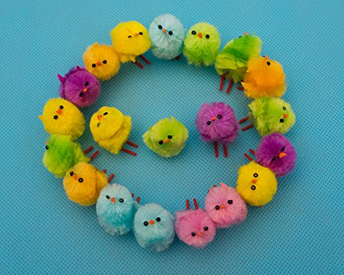 16 Pcs Super Mini SOMAN Easter Chicks Handcrafted Colorful Small Chicks Assorted Color (Biker Chick Costumes)