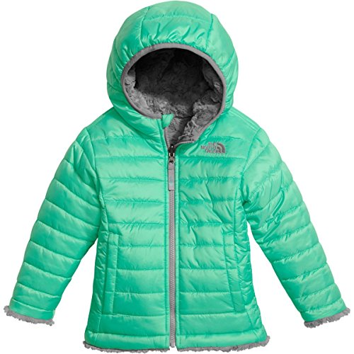 The North Face Toddler Girl's Reversible Mossbud Swirl Jacket - Bermuda Green - 2T (Past ()