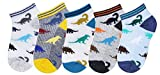 CHUNG Boys 5 Pack Cotton Low Cut Socks Star Dinosaur Stripe Print 2-9Y,PersonalDino5P,2-4Y