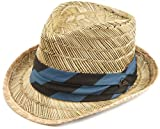 Quiksilver Men's Stealthy Fedora Hat, Retro Blue, Large-X-Large