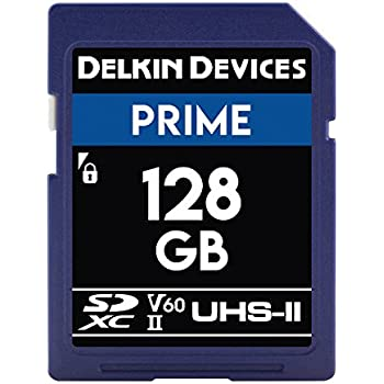 Amazon.com: Delkin Devices 128 GB Prime SDXC 1900 x UHS-II ...