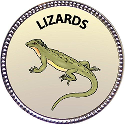 (Keepsake Awards Lizards Award, 1 inch Dia Silver Pin Nature Studies Collection)