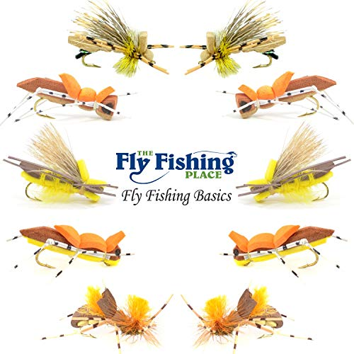 The Fly Fishing Place Basics Collection - Foam Hoppers Dry Fly Assortment - 10 Dry Fishing Grasshopper Flies - 5 Patterns - Hook Size 10 - Hopper Dry Fly