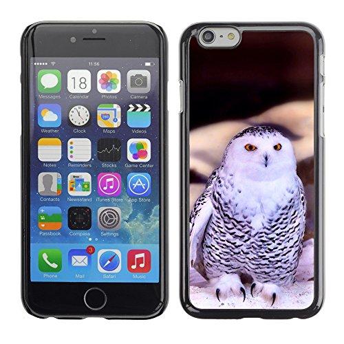 "Premio Sottile Slim Cassa Custodia Case Cover Shell // F00021321 Afficher hibou // Apple iPhone 6 6S 6G 4.7"""
