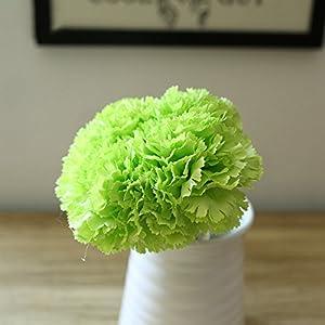 Riverbyland Artificial Flowers Green Carnation 6 pcs