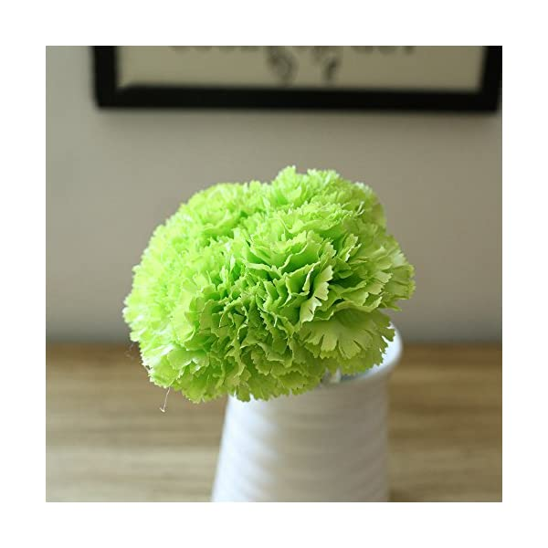 Riverbyland Artificial Flowers Green Carnation 6 pcs