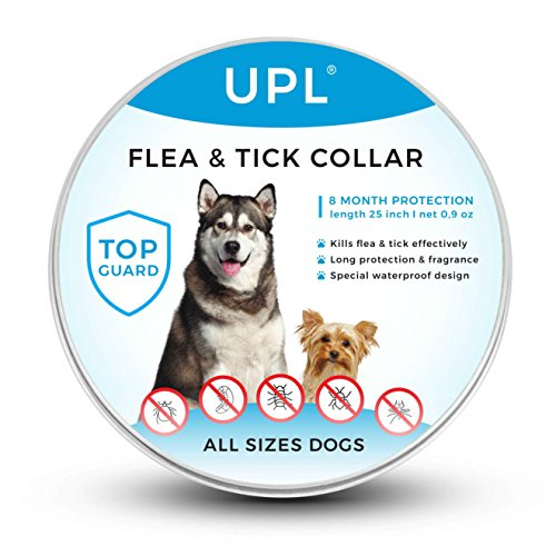 Flea and Tick Prevention for Dogs, Flea and Tick collar for Dogs, One Size Fits All, 25 inch, 8 MONTH PROTECTION, Charity