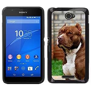 Design for Girls Plastic Cover Case FOR Sony Xperia E4 Pit-Bull American Dog Boston Terrier Canine OBBA