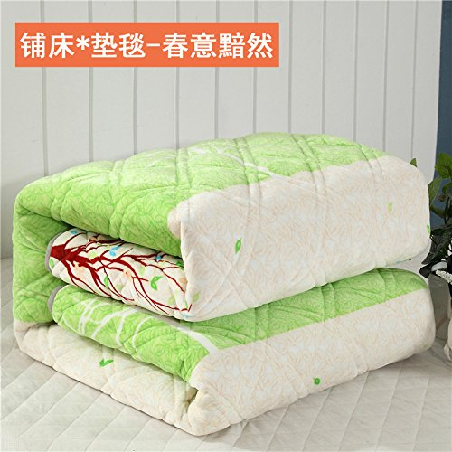 Znzbzt Autumn winter ultra soft blankets linen mat and Princess warm plush foldable with lovely velvet blankets, beds and lush 200x220cm, [spring] stamp baby Fleece