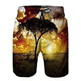 Philiphome Men's Board Short,Africa Sunset Way Stretch Swim Short