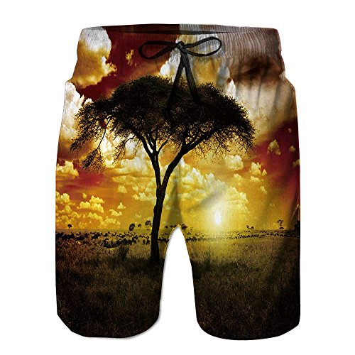 Philiphome Men's Board Short,Africa Sunset Way Stretch Swim Short by Philiphome