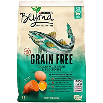 Purina Beyond Grain Free Ocean Whitefish & Egg Recipe Adult Dry Cat Food - 11 lb. Bag
