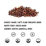 Cat's Claw Tincture Organic Cat's Claw Extract