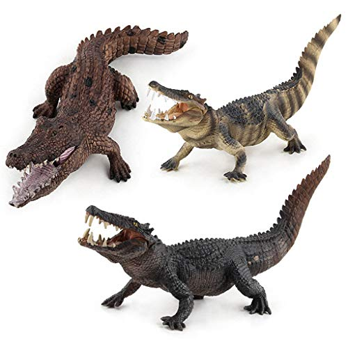 Wffo 2019 New Educational Science Crocodile Animal Model Ornament Figurine Toy for Kids Gift ()