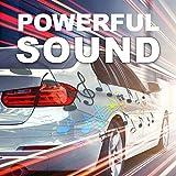 Sound Storm Laboratories LOPRO10 Amplified Car