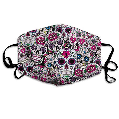 (Dustproof Anti-Bacterial Washable - Reusable Comfy Masks - Protective Breath Healthy Safety Warm Windproof Mask for Man and Woman Rose Flowers Sugar Skull)