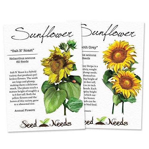 Edible Sunflower Seed Packet Duo (Mammoth Grey Stripe & Salt N' Roast) Non-GMO Seeds by Seed Needs -
