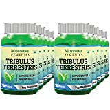Morpheme Tribulus Terrestris Caps - 500mg Extract - 60 Veg Caps (Pack Of 10)