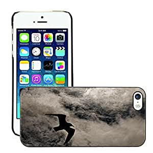 Super Stella Slim PC Hard Case Cover Skin Armor Shell Protection // M00147607 Seagull Flies Bird Water Water Bird // Apple iPhone 5 5S 5G